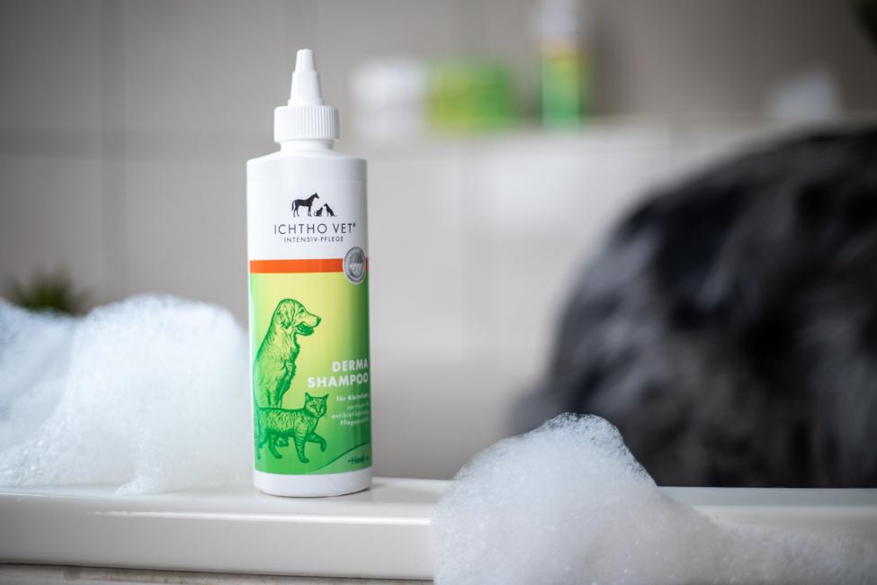 Hundeshampoo mit Schaum