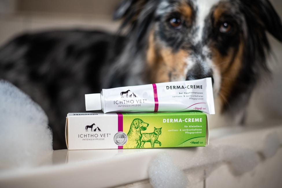 Creme Tube mit Hund